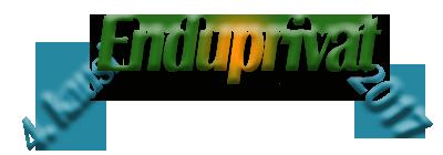 Logo ENDUII2017